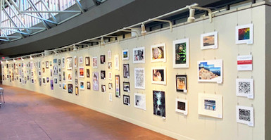 Art Gallery Hanging Systems for Art Displays