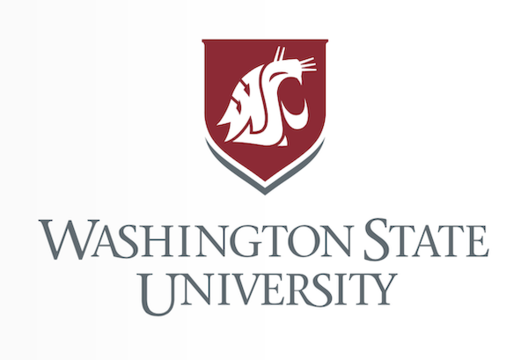 Art Program at Washington State University