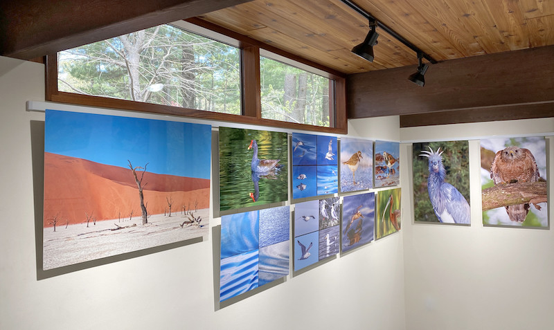 Gallery Wall Art Displays Made Easy with Art Hanging System